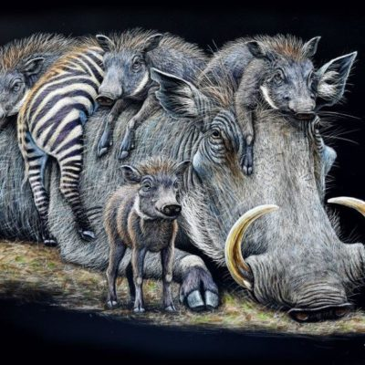 14x18 giclee print, Wart Hogs by artist Cynthie Fisher