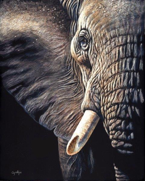 8x10 giclee print, Elephant Gaze by artist Cynthie Fisher